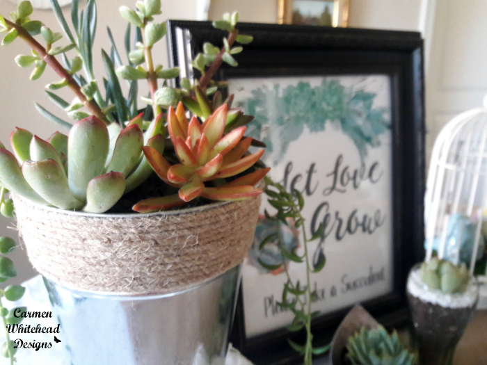 DIY Succulent Favors and Centerpieces - Carmen Whitehead Designs