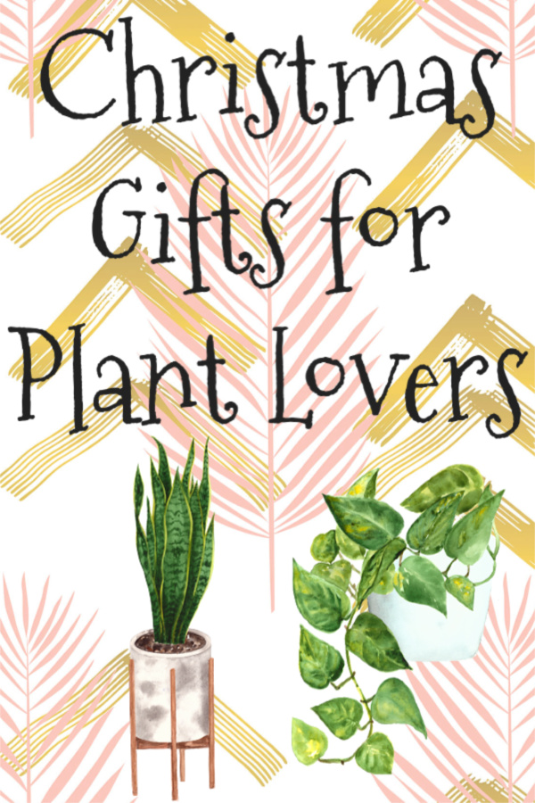 Christmas Gifts for the Plant Lover - Carmen Whitehead Designs