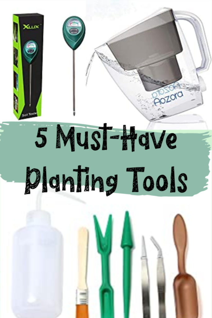 5 Must-Have Planting Tools by Carmen Whitehead
